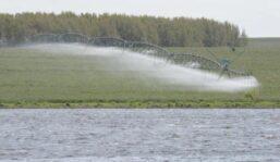 UTE aprobó descuento comercial al riego productivo eliminando el horario de punta en zafra